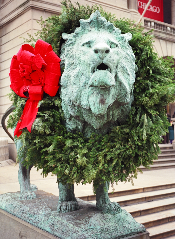 Art Institute Lion Amp Holiday Wreath Chicago Loop Framed
