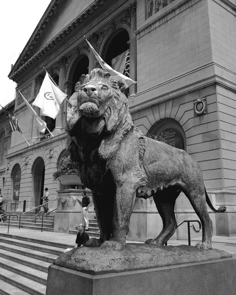 The Art Institute Lion Chicago Black Amp White Framed Print