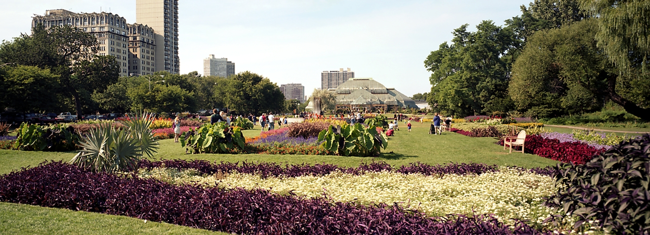 Flower Garden In Lincoln Park Conserevator Chicago Loop