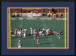framed-print-of-chicago-bears-46-defense