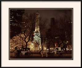 old-chicago-water-tower-framed-picture