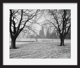 framed-print-of-winter-symmetry