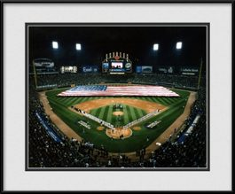 picture-of-us-cellular-with-usa-flag-white-sox-world-series-champions