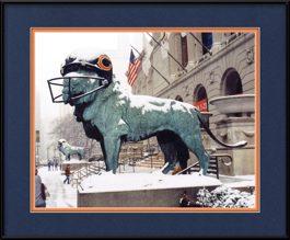 framed-print-of-bears-helmut-on-art-institute-lion-in-the-snow