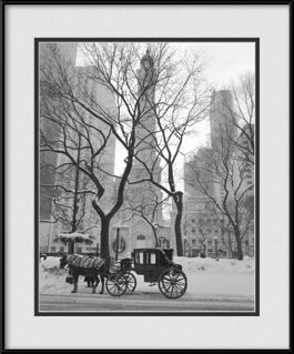 chicago-water-tower-horse-carriage-ride-framed-picture
