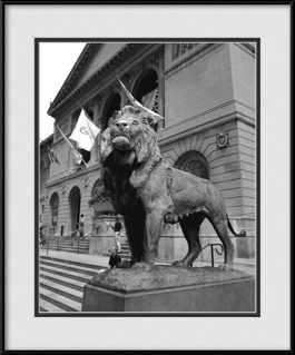 picture-of-the-art-institute-lion
