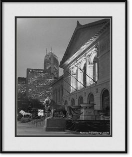 framed-print-of-art-institute-building-lion