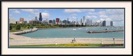 picture-of-chicago-panorama-from-shedd-aquarium