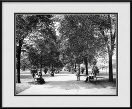framed-print-of-lincon-park-vintage-chicago-1900